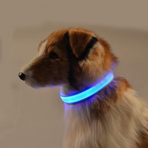 Ошейник для собак светящийся